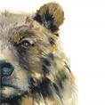 Bear_00